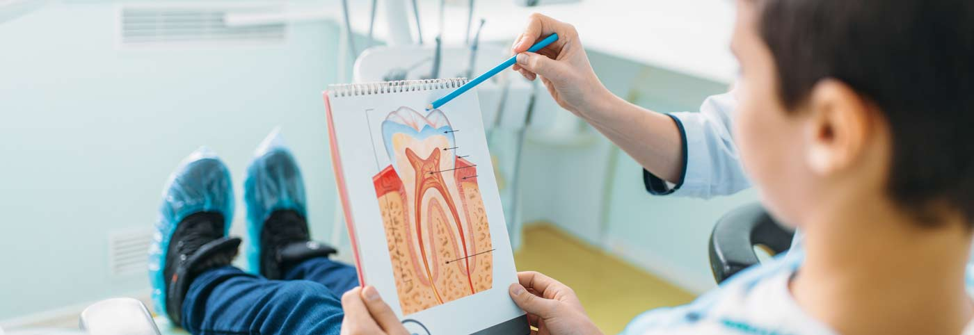 Zubarka pokazuje crtez zuba